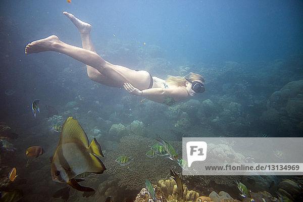 Frau in voller Länge im Meer schwimmend