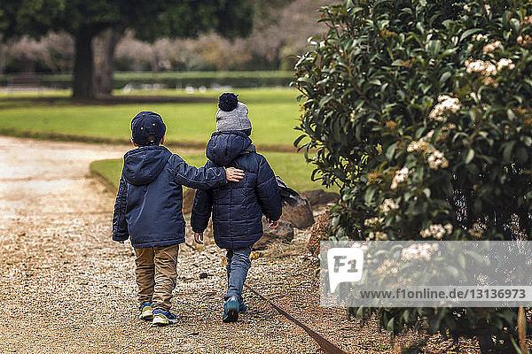 Rückansicht von Brüdern in warmer Kleidung beim Spaziergang im Park
