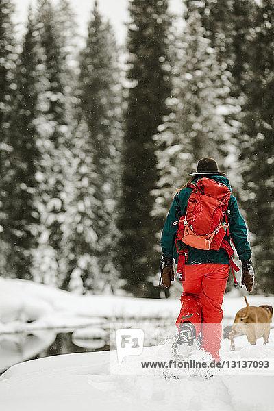 Rückansicht einer Frau mit Hund beim Spaziergang auf einem schneebedeckten Feld im Wald