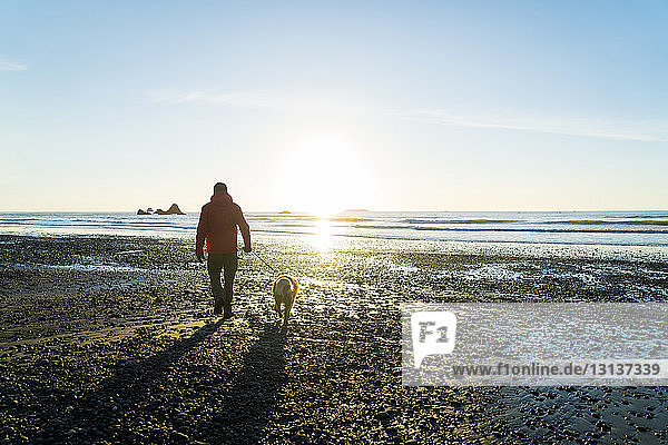 Rear view of hiker with Golden Retriever walking at Ruby beach against sky