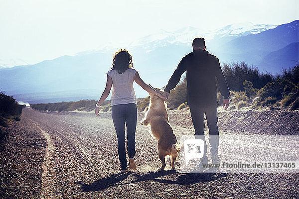 Rückansicht von Mann und Frau mit verspieltem Hund auf einem Feldweg