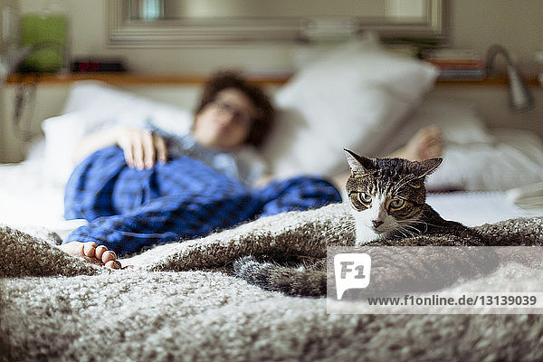 Portrait of cat relaxing while woman lying on bed in background