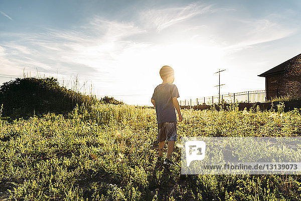 Rear view of boy standing on grassy field against sky