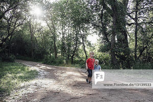 Brüder  die im Wald auf einem Feldweg gehen