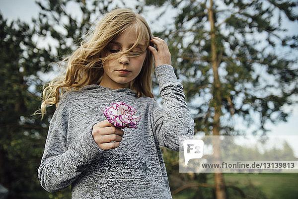 Niedrigwinkelansicht eines Mädchens  das eine Blume hält  während es auf dem Feld steht