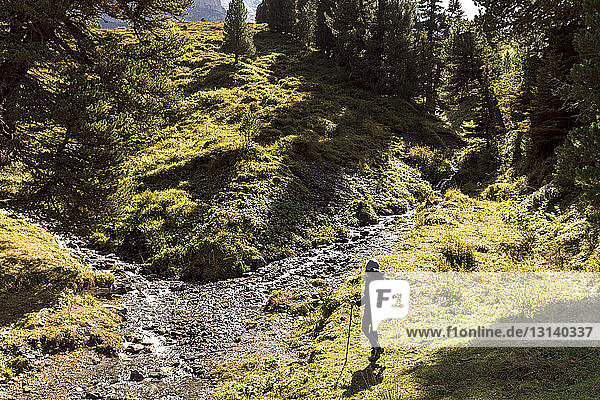 Hochwinkelaufnahme einer Wanderin beim Bergwandern