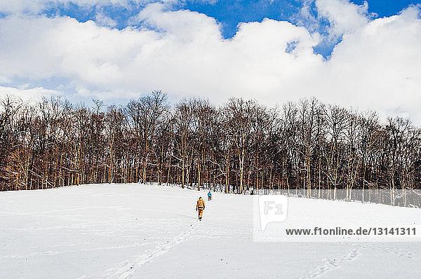 Rückansicht von Geschwistern  die auf einem schneebedeckten Feld vor bewölktem Himmel im Wald spazieren gehen