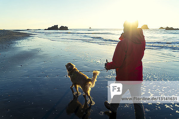 Hiker with Golden Retriever walking at Ruby beach against sky during sunset