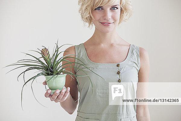 Porträt einer schönen Frau  die eine Topfpflanze gegen die Wand hält