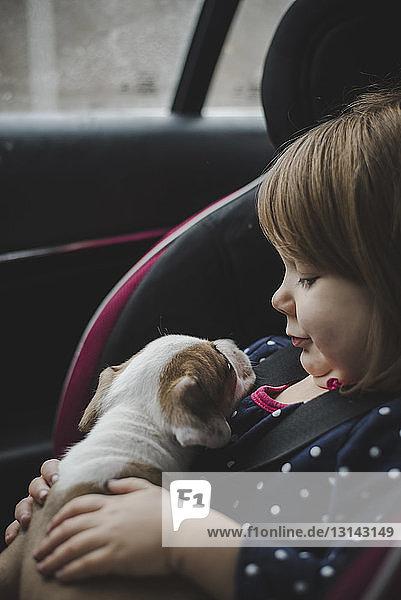 Nahaufnahme eines Mädchens mit Welpe im Auto sitzend Nahaufnahme eines Mädchens mit Welpe im Auto sitzend
