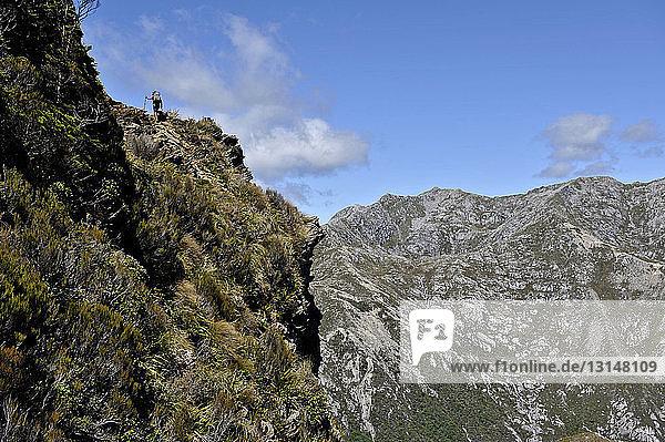 Mid adult woman on mountainside  hiking through Kahurangi National Park  New Zealand