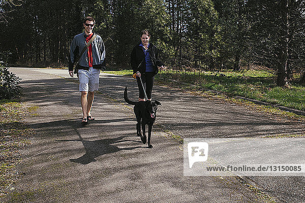 Couple walking a dog in sunlit park