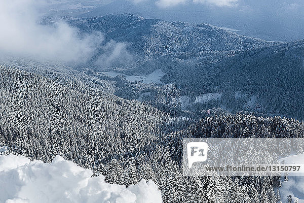 High angle view over snow covered hills and forest  Lenggries  Bayern  Germany