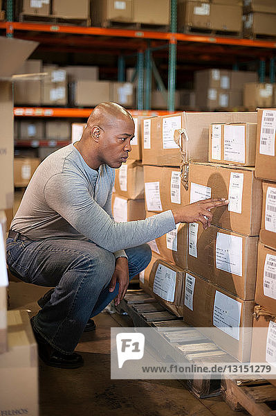 Male warehouse worker reading labels on cardboard box