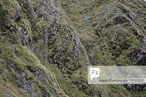 Distant view of female hiker climbing up mountain ladder  Tararua Ridge  New Zealand