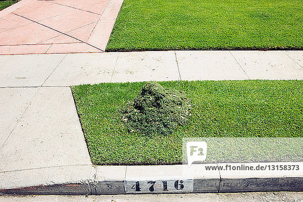 Heap of cut grass on suburban pavement