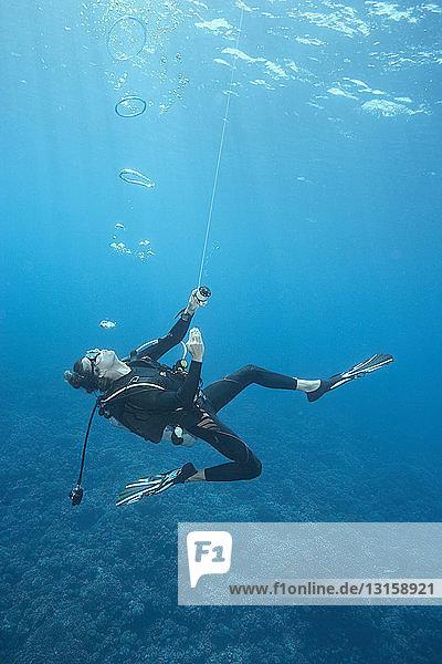 Diver swimming in ocean