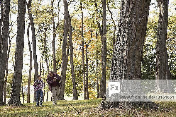 Senior und Enkel beim Waldspaziergang
