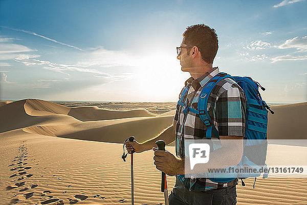 Mann wandert in den Sanddünen von Glamis  Kalifornien  USA