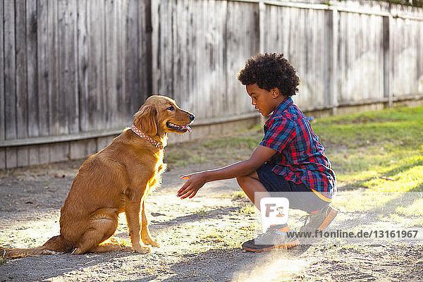Junge dressiert Hund zum Pfötchengeben im Garten