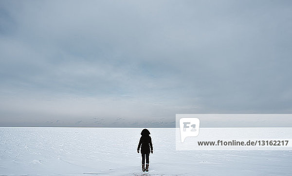 Back view of woman on winter landscape