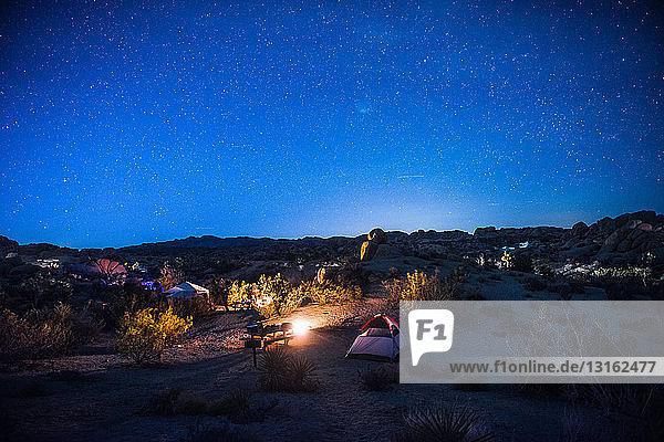 Campingplatz bei Nacht  Joshua-Tree-Nationalpark  Kalifornien  USA
