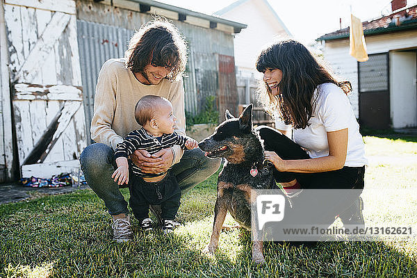 Baby boy and pet dog meeting in garden