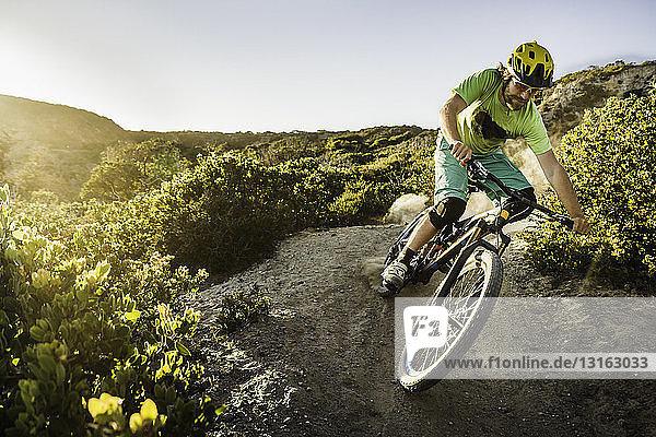 Junger Mann beim Mountainbiken auf Feldwegen  Monterey  Kalifornien  USA