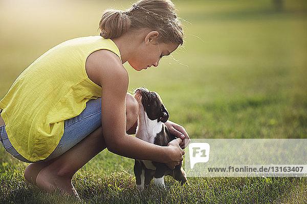 Seitenansicht eines auf Gras kauernden Mädchens  das einen Boston-Terrier-Welpen streichelt
