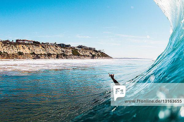 Hand eines im Meer aufgewachsenen männlichen Surfers  Encinitas  Kalifornien  USA