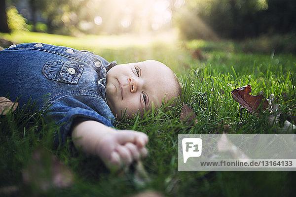 Kleiner Junge in Jeanshemd auf herbstblattbedecktem Gras im Sonnenlicht liegend und wegschauend