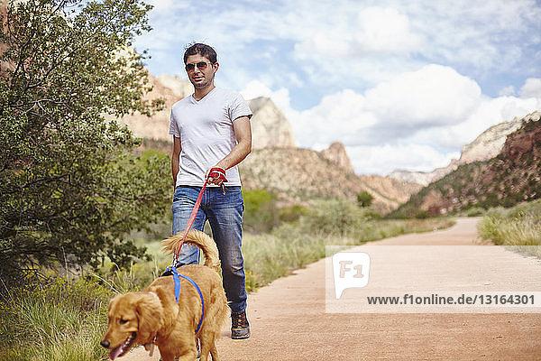 Gehender Hund  Zion  Utah  USA