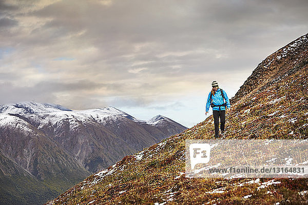Female hiker hiking on steep mountain  Wrangell St. Elias  Alaska  USA
