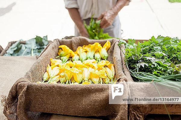 Farmer selling organic vegetables on stall