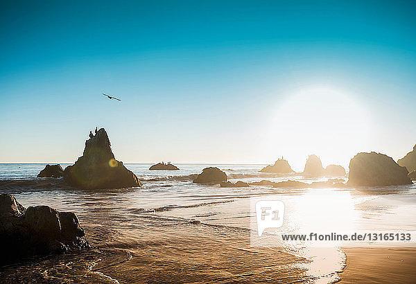 Felsen am Strand von El Matador  Malibu  Kalifornien  USA
