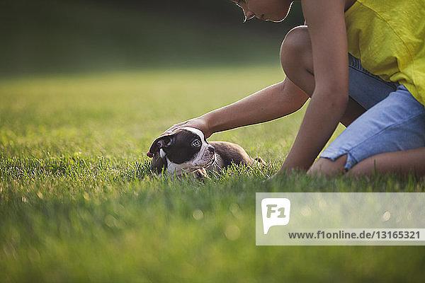 Seitenansicht eines auf Gras knienden Mädchens  das einen Boston-Terrier-Welpen streichelt