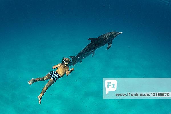 Freitauchen von Jungen mit Atlantischen Fleckendelphinen