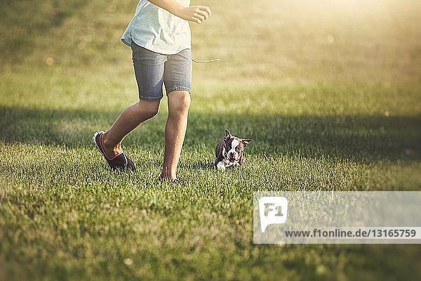 Taille eines Mädchens  das mit einem Boston-Terrier-Welpen auf Gras läuft