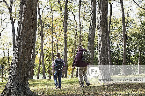 Rückansicht von Senior und Enkel beim Waldspaziergang