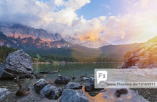 Eibsee und Zugspitze bei Tag  Bayern  Deutschland