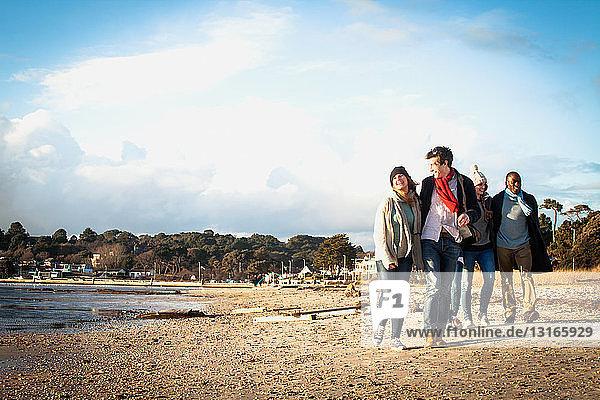 Fünf erwachsene Freunde gehen am Strand spazieren
