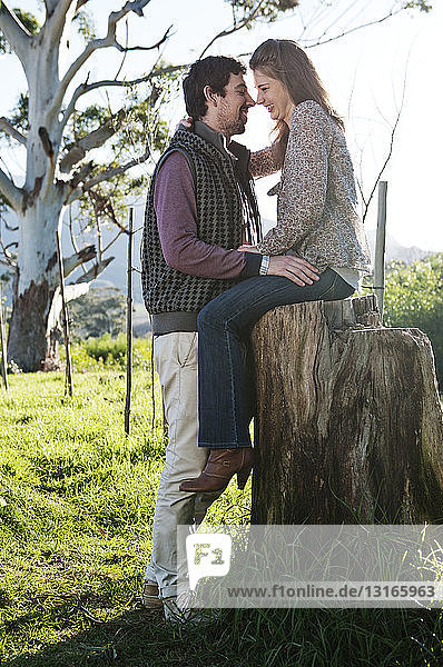 Junge Frau sitzt auf Baumstumpf  ihr Freund steht davor