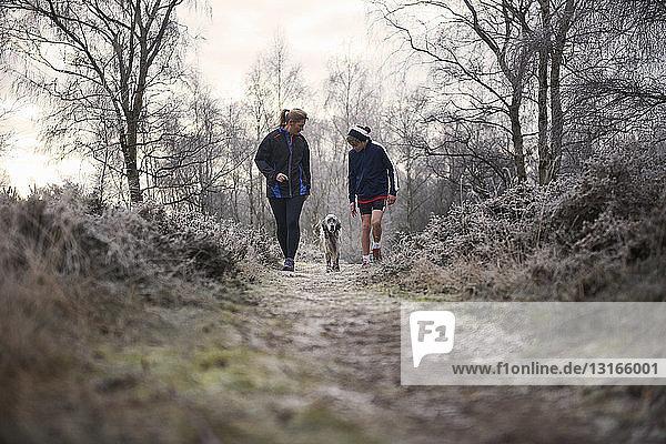 Vorderansicht von Mutter und Sohn beim Spaziergang mit nach unten schauendem Hund