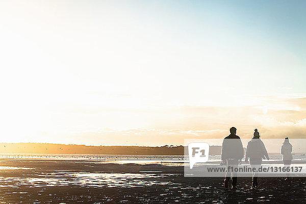 Erwachsene Freunde beim Spaziergang an der Küste