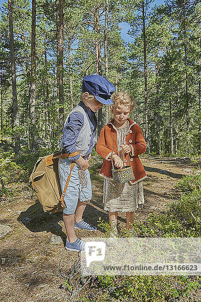 Boy and girl wearing retro clothes picking berries in forest