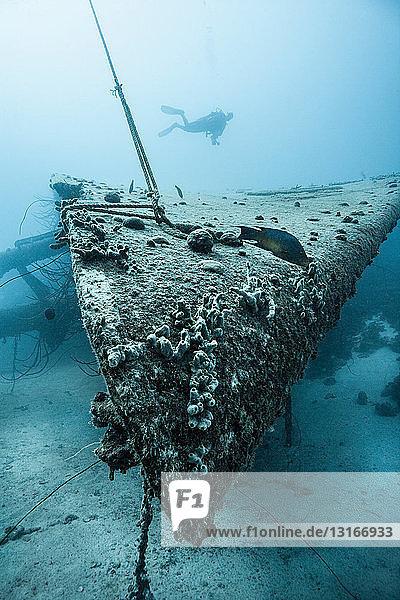 Taucher untersucht Unterwasserschiffswrack