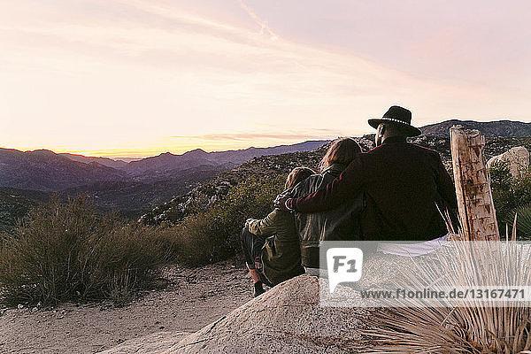 Rückansicht von drei erwachsenen Freunden mit Blick auf die Landschaft  Los Angeles  Kalifornien  USA