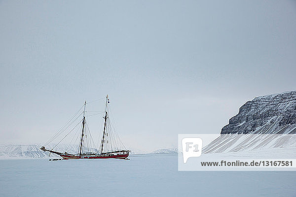 The Noorderlicht  a Dutch Schooner. Each year the Nooderlicht is frozen into the ice in Spitsbergen  and serves as an excellent base camp in the wilderness  perfect for spotting polar bears