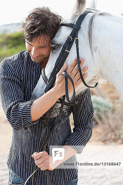 Mann hält Pferd