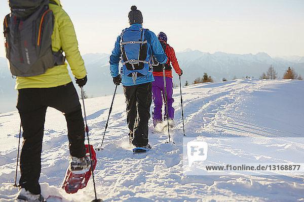 Drei mittlere erwachsene Freunde beim Schneeschuhwandern in den Dolomiten  Eisacktal  Südtirol  Italien